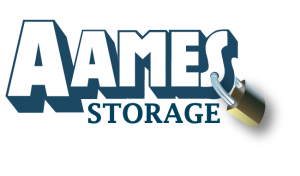 AAMES Logo 300x176 - Home